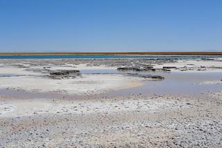 Laguna Cejar 9704