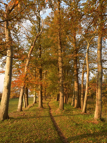 Autumnal hike