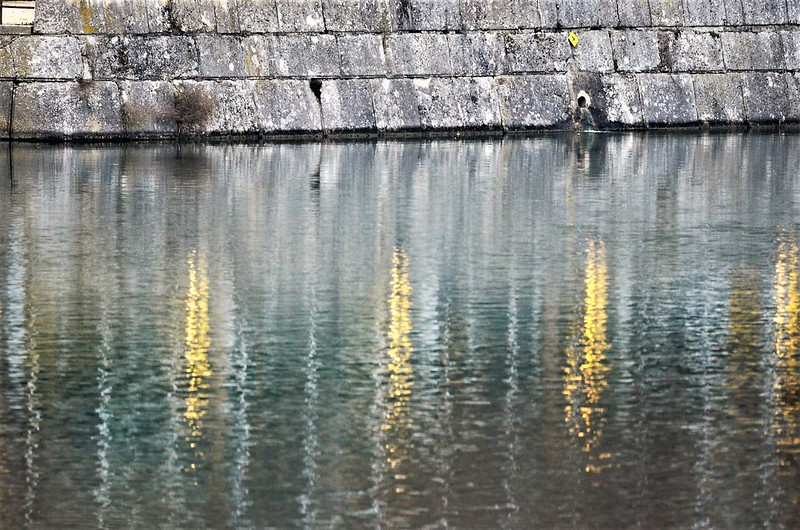 Aare Reflections 05.12 (19)