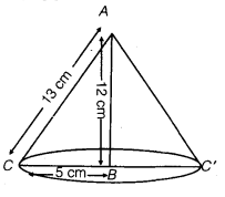NCERT Solutions for Class 9 Maths Chapter 13 Surface Area and Volumes 50