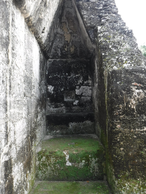 Where the Mayan Sleeps Tonight, Tikal