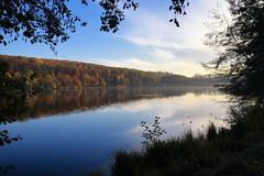 Le charme de l'automne - Photo of Zinswiller