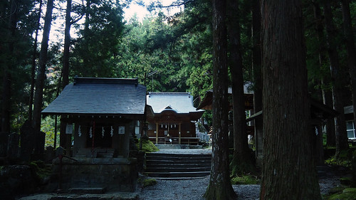 Shrine in the forest