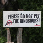 Don`t Pet The Dinosaurs