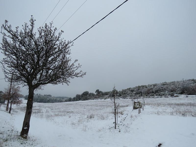 21-mars-2018--le-printemps-sous-la-neige