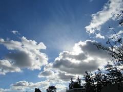 Clouds 11/30/18