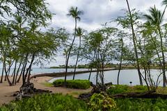 Anaehoomalu Bay Waikola Big island, Hawaii