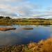 Morton Lochs
