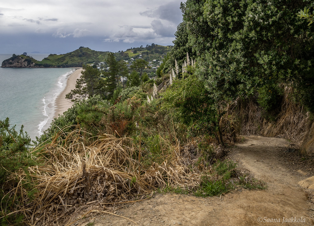 Things to see and do in the Coromandel Peninsula: Coastal Walk to Cathedral Cove