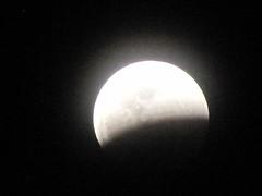 WolfMoonEclipse-1