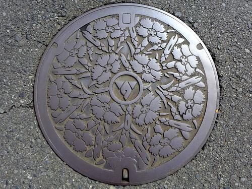Hadano Kanagawa, manhole cover (神奈川県秦野市のマンホール)