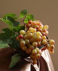 The Crimean grapes