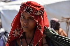 ETHIOPIE : BATI DESSIE HARAR