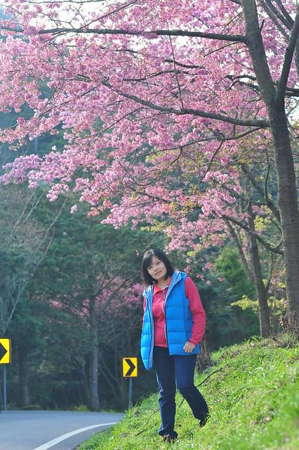 CHI_1576, Nikon D3, Sigma Macro 105mm F2.8 EX DG