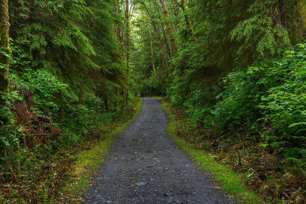 Juan de Fuca trail