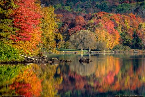 autumn foliage seasons fallseason fallfoliage autumncolor autumnleaves reflection reflections lake pond maine newengland mainehighlands highlands lakewassookeag wassookeag dexter dextermaine penobscotcounty forest trees