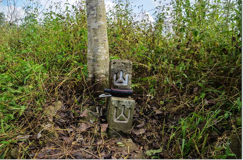 玉打山北峰冠字補近(43)山字森林三角點(Elev. 1310 m)