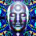Meditation_Nexus_01