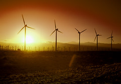 California Wind Turbines at Sunset. Original image from Carol M. Highsmith's America, Library of Congress collection. Digitally enhanced by rawpixel.