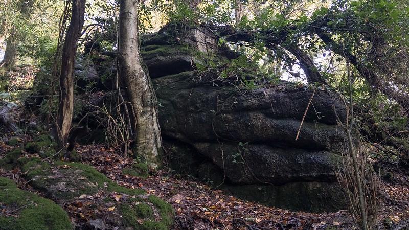 Hawkmoor Rocks