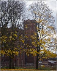 Oldham mills
