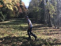 Débroussaillage Plainpalais 2018
