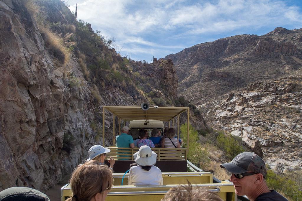 Tram Ride in Sabino Canyon