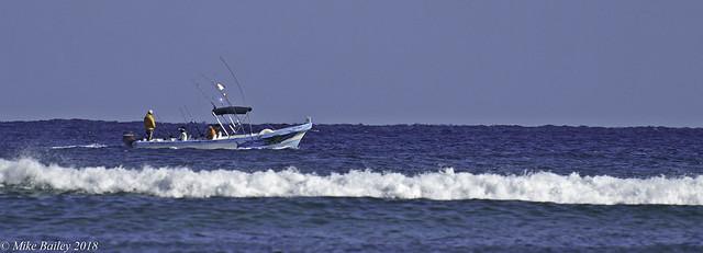 A days Sport Fishing!!