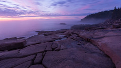 Magenta Morning in Maine