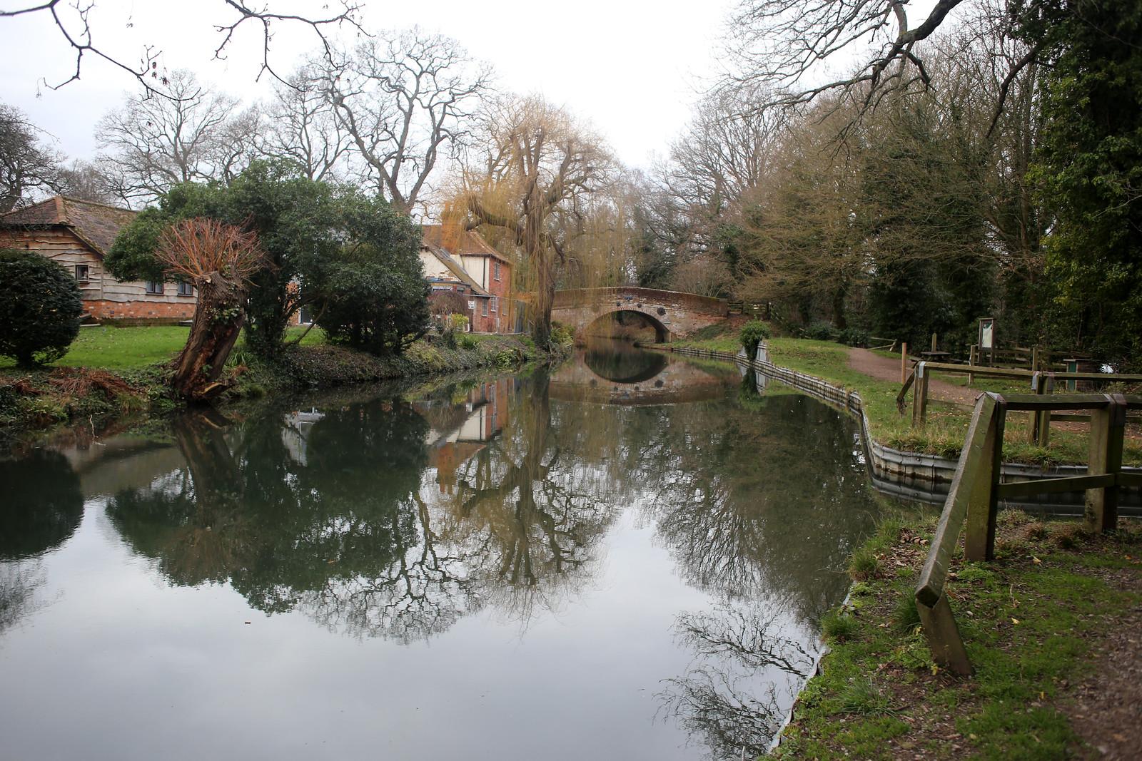 The Basingstoke Canal near Winchfield