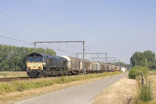 Railtraxx 266 118-9 Berlaar
