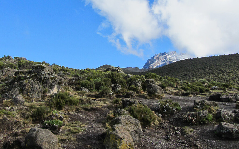 Mt Kilimanjaro via Rongai Route 336