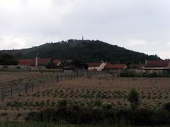 20080515 23465 0905 Jakobus Champdieu Hügel Feld Häuser Maria Statue