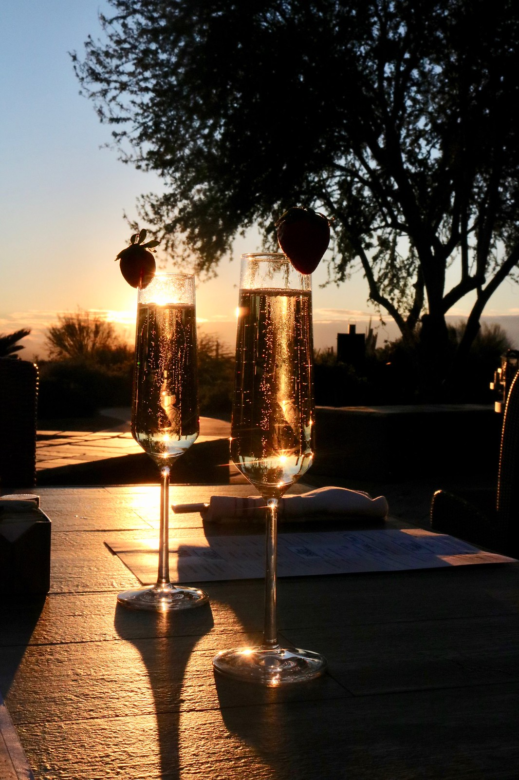 Ritz-Carlton, Dove Mountain Culinary Experience