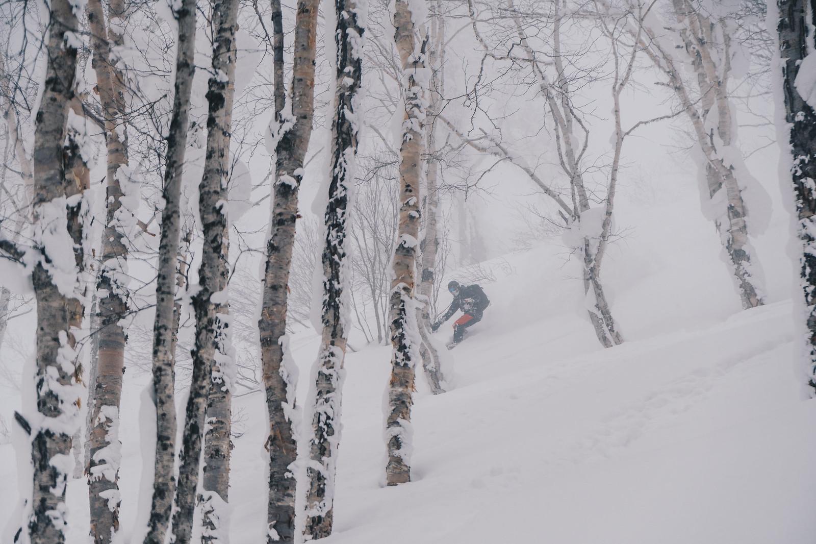 Metsälaskua – sitä vartenhan Japaniin tullaan.