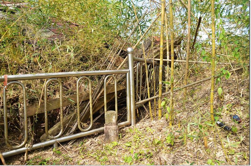南頂坪林山冠字補山(07)山字森林三角點(Elev. 627 m) 3