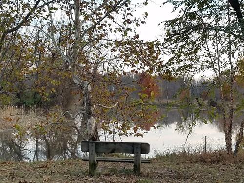 Anacostia River Parkland