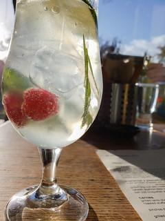 Gin and tonic at Cesar