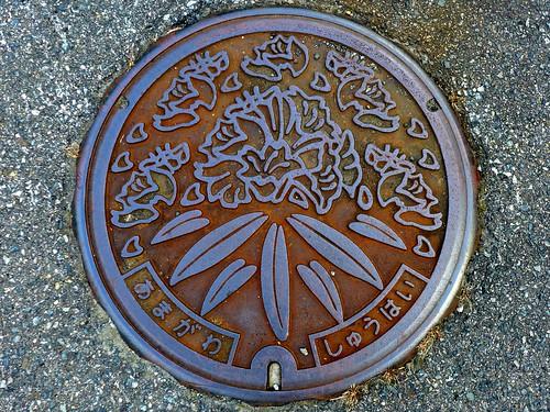 Amagawa Kyuragi Saga, manhole cover (佐賀県厳木町天川のマンホール)