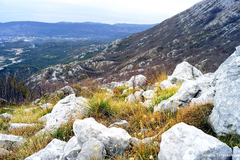 Вид в сторону хребта Одиево