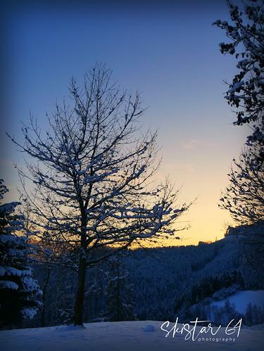 winterliche Momente (1)