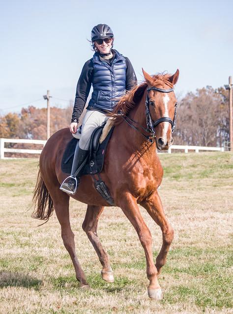 20181116 Austen's Ponies_66