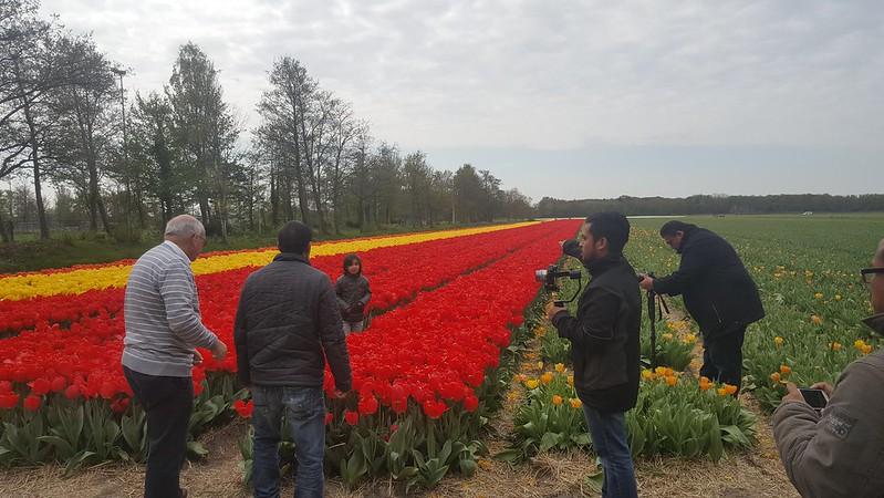 Lokasi  Berhampiran Keukenhof, Taman Bunga Tulip Popular Di Belanda.