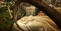 Little Briar Rose (Sleeping Beauty)