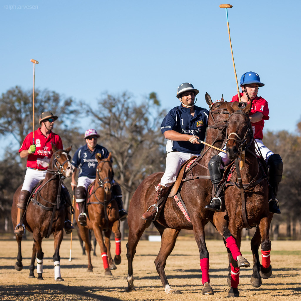 Victory Cup Polo | Ralph Arvesen