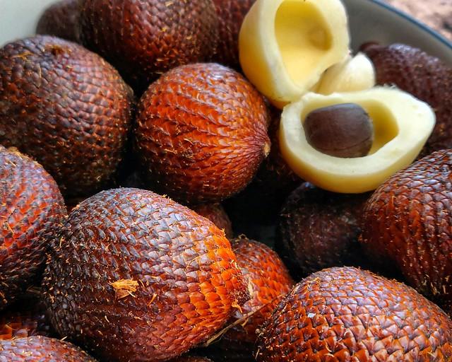 Indonesian Salak Fruit