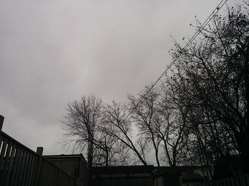 Gray sky #toronto #dovercourtvillage #grey #clouds #morning