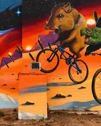window artistsjoepagac mural wall appleiphone7plus wallart places tucsonaz tucson arizona unitedstates us windowwednesdays hww