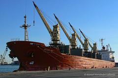 Ships that Sank