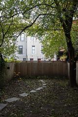 Backyard, Brooklyn, New York City [Img_66384]